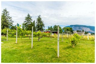 Photo 23: 5200 Northeast 30 Street in Salmon Arm: N. Broadview House for sale : MLS®# 10121876