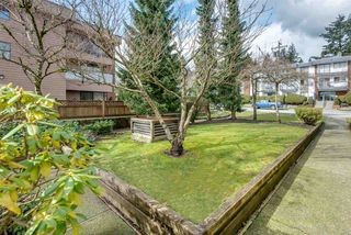 "Photo 5: 109 1050 HOWIE Avenue in Coquitlam: Central Coquitlam Condo for sale in ""MONTEREY GARDENS"" : MLS®# R2399814"
