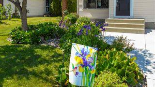 Photo 38: 5824 185 Street in Edmonton: Zone 20 House for sale : MLS®# E4187762