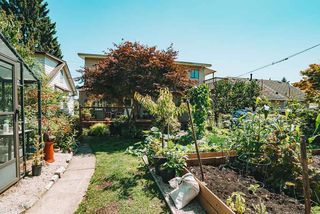 Photo 31: 1513 EIGHTH Avenue in New Westminster: West End NW House for sale : MLS®# R2479210