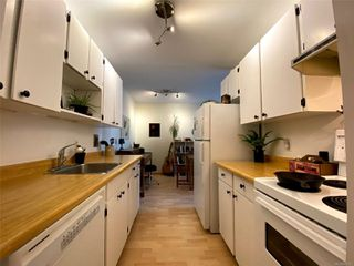 Photo 3: 306 1351 Esquimalt Rd in : Es Saxe Point Condo Apartment for sale (Esquimalt)  : MLS®# 850312