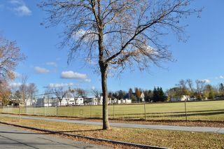 Photo 3: 8526 79 Avenue in Edmonton: Zone 17 House for sale : MLS®# E4217681