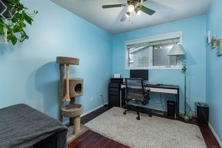 Photo 16: 8803 182 Street in Edmonton: Zone 20 House for sale : MLS®# E4221528