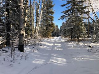 Photo 2: On Range road 8-0  , Section 19, 36, 7, W5: Rural Clearwater County Land for lease : MLS®# A1055389