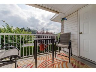 Photo 20: 12 2919 TRAFALGAR STREET in Abbotsford: Central Abbotsford Townhouse for sale : MLS®# R2299758