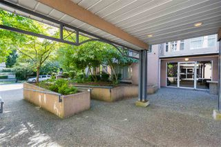 Photo 11: 202 2437 WELCHER AVENUE in Port Coquitlam: Central Pt Coquitlam Condo for sale : MLS®# R2301667