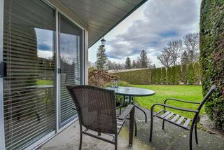 Photo 19: 46 3115 TRAFALGAR STREET in Abbotsford: Central Abbotsford Townhouse for sale : MLS®# R2331716