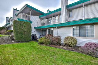 Photo 20: 46 3115 TRAFALGAR STREET in Abbotsford: Central Abbotsford Townhouse for sale : MLS®# R2331716