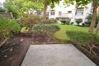 Photo 13: 98 2450 HAWTHORNE Avenue in Port Coquitlam: Central Pt Coquitlam Townhouse for sale : MLS®# R2409908