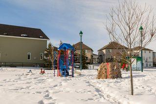 Photo 39: 3355 18B Avenue in Edmonton: Zone 30 House for sale : MLS®# E4189133