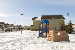 Photo 41: 3355 18B Avenue in Edmonton: Zone 30 House for sale : MLS®# E4189133