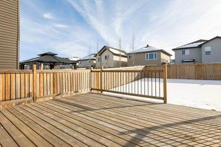 Photo 36: 3355 18B Avenue in Edmonton: Zone 30 House for sale : MLS®# E4189133
