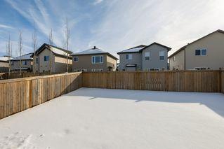 Photo 38: 3355 18B Avenue in Edmonton: Zone 30 House for sale : MLS®# E4189133