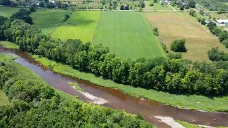 Photo 4: West Branch Road in Welsford: 108-Rural Pictou County Vacant Land for sale (Northern Region)  : MLS®# 202013160