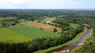 Photo 6: West Branch Road in Welsford: 108-Rural Pictou County Vacant Land for sale (Northern Region)  : MLS®# 202013160