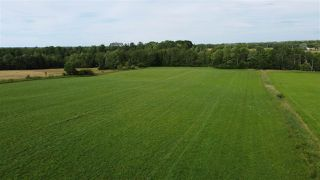 Photo 7: West Branch Road in Welsford: 108-Rural Pictou County Vacant Land for sale (Northern Region)  : MLS®# 202013160