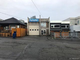 Photo 14: 723 Princess Ave in Victoria: Vi Downtown Industrial for sale : MLS®# 838107