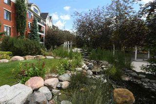 Photo 30: 408 9819 96A Street in Edmonton: Zone 18 Condo for sale : MLS®# E4212307