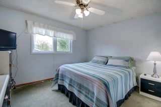 Photo 18: 416 PENBROOKE Crescent SE in Calgary: Penbrooke Meadows Detached for sale : MLS®# A1037491