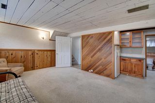 Photo 25: 416 PENBROOKE Crescent SE in Calgary: Penbrooke Meadows Detached for sale : MLS®# A1037491