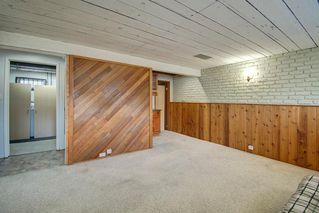 Photo 28: 416 PENBROOKE Crescent SE in Calgary: Penbrooke Meadows Detached for sale : MLS®# A1037491