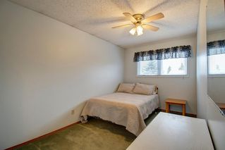 Photo 20: 416 PENBROOKE Crescent SE in Calgary: Penbrooke Meadows Detached for sale : MLS®# A1037491
