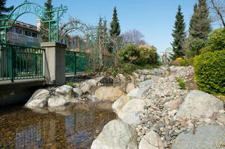 "Photo 24: # 413 13860 70TH AV in Surrey: East Newton Condo for sale in ""CHELSEA GARDENS"" : MLS®# F1307273"