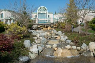 "Photo 23: # 413 13860 70TH AV in Surrey: East Newton Condo for sale in ""CHELSEA GARDENS"" : MLS®# F1307273"