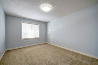Photo 29: 482 WILLIAMSTOWN GR NW: Airdrie House for sale : MLS®# C4172296