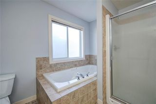 Photo 33: 482 WILLIAMSTOWN GR NW: Airdrie House for sale : MLS®# C4172296
