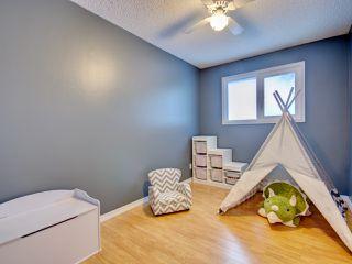 Photo 10: 6811 40 AV NW in Edmonton: Zone 29 House for sale : MLS®# E4143575