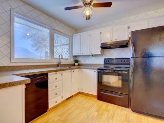 Photo 6: 6811 40 AV NW in Edmonton: Zone 29 House for sale : MLS®# E4143575