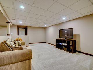 Photo 15: 6811 40 AV NW in Edmonton: Zone 29 House for sale : MLS®# E4143575
