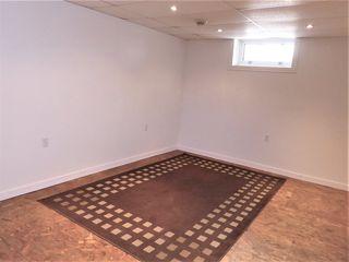 Photo 16: 10216 146 Street E in Edmonton: Zone 21 House for sale : MLS®# E4202390