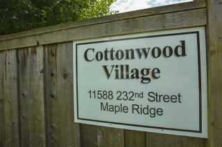 "Photo 35: 32 11588 232ND Street in Maple Ridge: Cottonwood MR Townhouse for sale in ""Cottonwood Village"" : MLS®# R2477068"