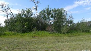 Photo 12: Mapes Acreage in Dundurn: Lot/Land for sale (Dundurn Rm No. 314)  : MLS®# SK821346