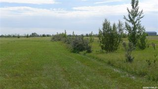 Photo 10: Mapes Acreage in Dundurn: Lot/Land for sale (Dundurn Rm No. 314)  : MLS®# SK821346