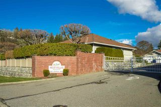 "Main Photo: 7 2006 WINFIELD Drive in Abbotsford: Abbotsford East Townhouse for sale in ""Ascot Hills II"" : MLS®# R2530483"
