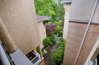"""Photo 8: 408 1188 CARDERO Street in Vancouver: West End VW Condo for sale in """"THE HAMPSTEAD"""" (Vancouver West)  : MLS®# V957664"""