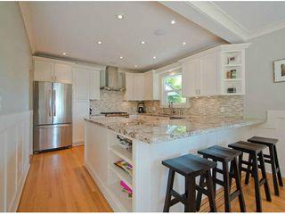 Photo 4: 11402 RIVER WYND Street in Maple Ridge: Southwest Maple Ridge House for sale : MLS®# V1079224