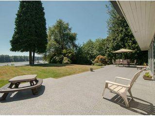 Photo 20: 11402 RIVER WYND Street in Maple Ridge: Southwest Maple Ridge House for sale : MLS®# V1079224