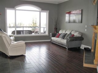Photo 11: 26 LONGVIEW Drive: Spruce Grove House for sale : MLS®# E4193394
