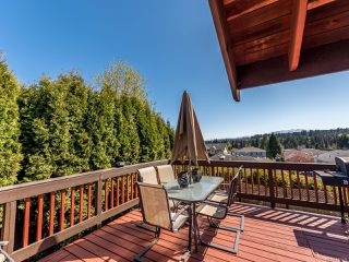 Photo 21: 739 Eland Dr in CAMPBELL RIVER: CR Campbell River Central House for sale (Campbell River)  : MLS®# 837509