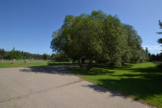 Photo 11: 51322- RR262: Rural Parkland County House for sale : MLS®# E4209361