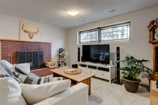 Photo 19: 10427 Wapiti Drive SE in Calgary: Willow Park Detached for sale : MLS®# A1048790