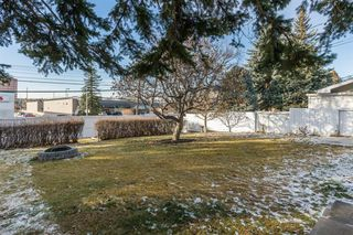 Photo 26: 10427 Wapiti Drive SE in Calgary: Willow Park Detached for sale : MLS®# A1048790