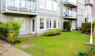 Photo 19: 102 12155 75A Avenue in Surrey: West Newton Condo for sale : MLS®# R2527235