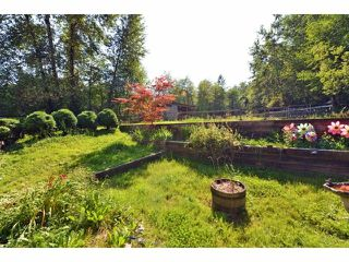 Photo 18: 6677 267TH ST in Langley: County Line Glen Valley House for sale : MLS®# F1424854