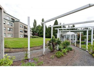 Photo 20: # 402 1725 128TH ST in Surrey: Crescent Bch Ocean Pk. Condo for sale (South Surrey White Rock)  : MLS®# F1441077
