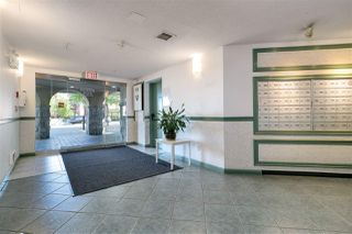 Photo 20: 210 519 TWELFTH STREET in New Westminster: Uptown NW Condo for sale : MLS®# R2275586